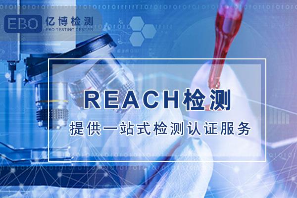 亚马逊REACH检测报告